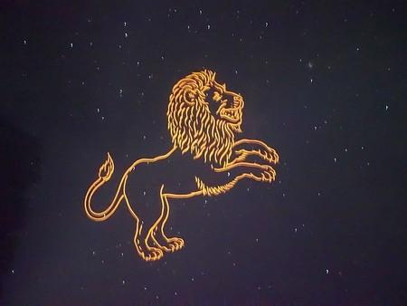 Гороскоп на сегодня для мужчин Львов