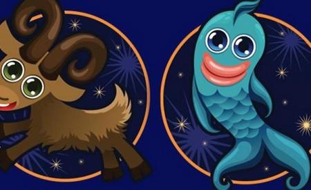 Совместимость знаков Зодиака Козерог и Рыбы
