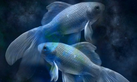Гороскоп на месяц для мужчины Рыбы